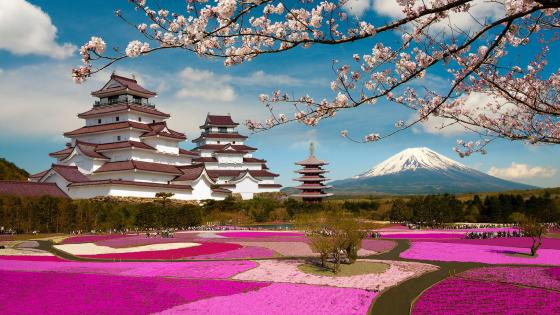 Aizuwakamatsu Castle at spring wallpaper