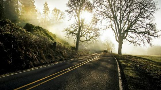 A single car on the road wallpaper