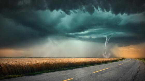 Hurricane next to the road wallpaper