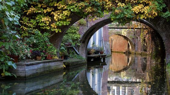 Utrecht Canal Bridge wallpaper