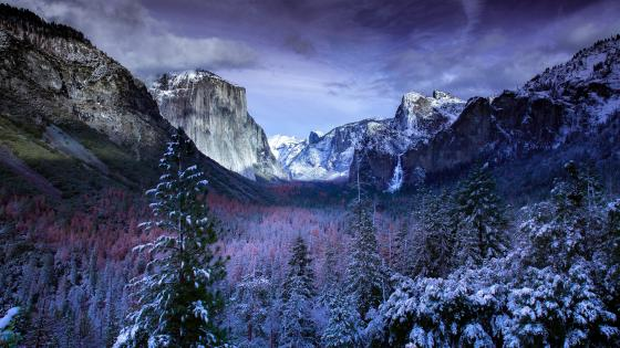 Yosemite Valley - Yosemite National Park wallpaper