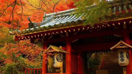 Japanese building in the fall wallpaper