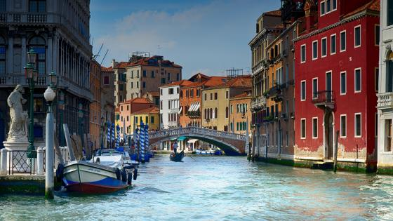 Grand Canal and the Rialto Bridge wallpaper