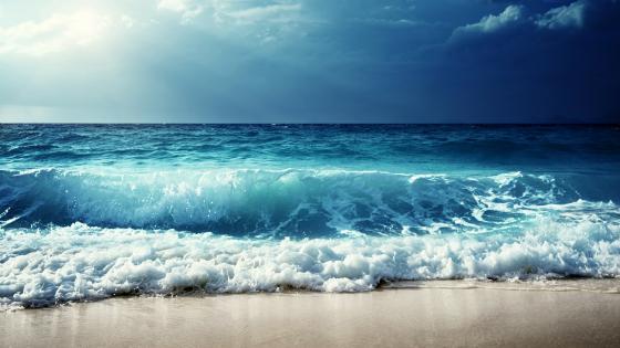 Sea before storm wallpaper