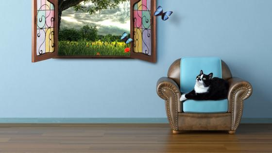 Cat in the armchair wallpaper