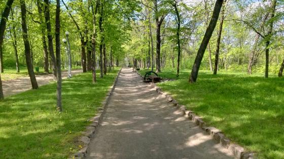 Park in spring wallpaper