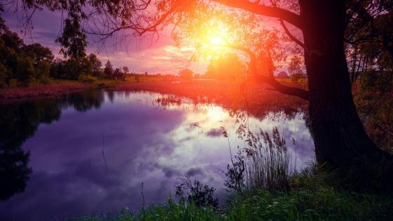 Sunset lake scenery wallpaper
