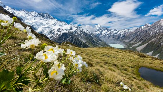 Hooker Valley (Aoraki/Mount Cook National Park) wallpaper