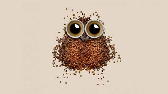 Coffe owl wallpaper