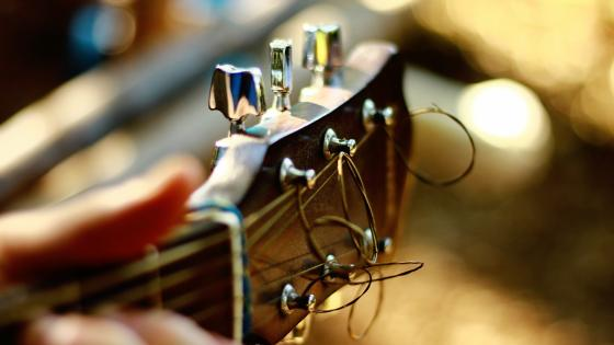 Guitar fingerboard strings wallpaper