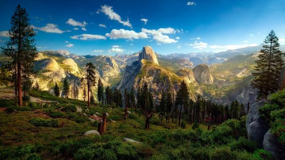 Yosemite Valley and Half Dome wallpaper