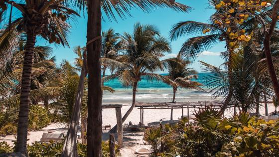 Caribean sea at Tulum, Mexico wallpaper