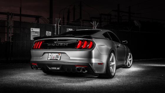 Roush Ford Mustang GT wallpaper