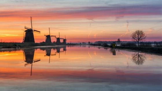 Kinderdijk Windmills wallpaper