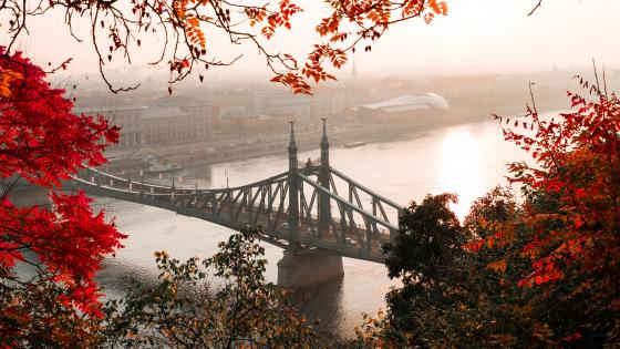 Liberty Bridge (Budapest) wallpaper