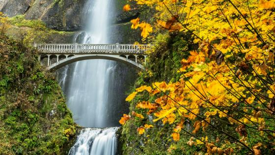 Benson Footbridge at Multnomah Falls (Oregon) wallpaper