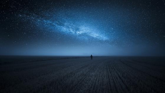 Walking in the night wallpaper