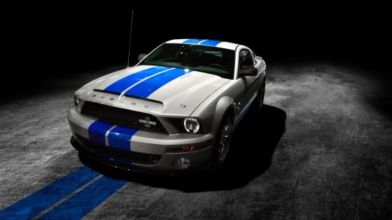 White and blue Shelby wallpaper