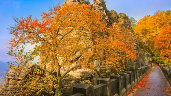 Bastei (Saxon Switzerland National Park) wallpaper