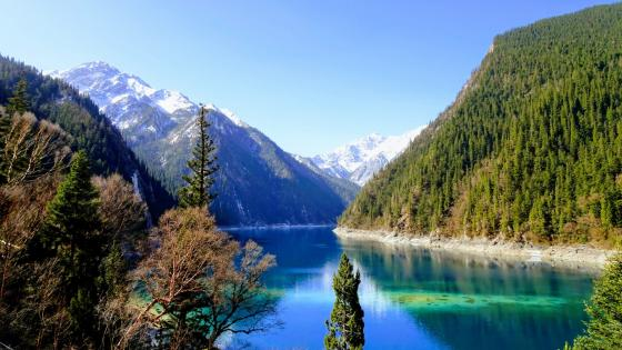 Long Lake in Jiuzhaigou (Jiuzhai Valley National Park) wallpaper