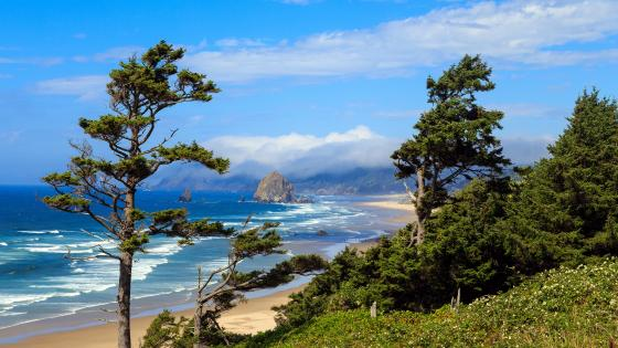 Ecola Point, Cannon Beach (Oregon) wallpaper