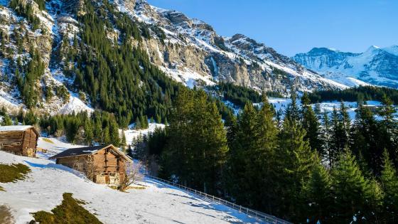 Swiss Alps in winter season wallpaper