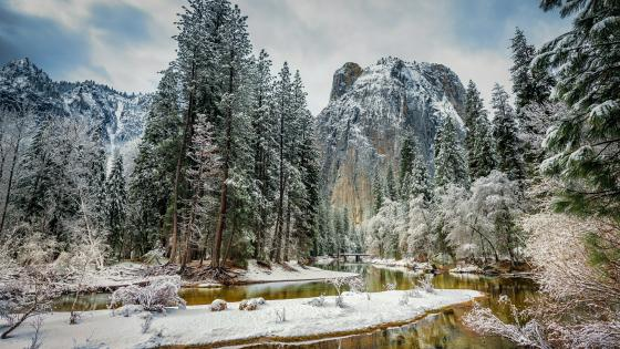 Snow covered Yosemite National Park wallpaper