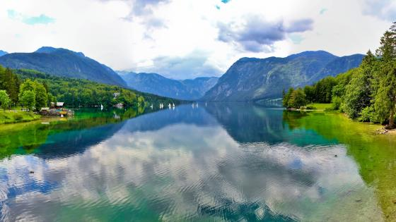 Lake Bohinj in Triglav National Park wallpaper