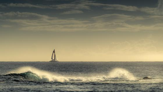 Sailing boat in the horizon wallpaper
