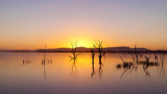 Sunrise over Lake Fyans in The Grampians wallpaper