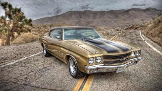 Chevrolet Chevelle SS Coupé wallpaper