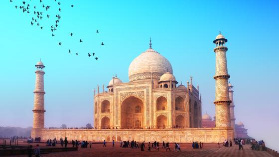 Taj Mahal - The monument of love wallpaper