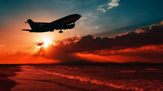 Airplane silhouette in the sunset wallpaper