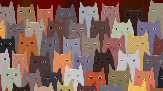Cardboard cats wallpaper