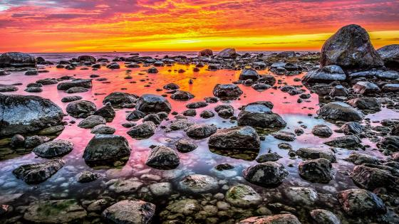 Rocky shore at sunset wallpaper