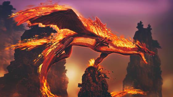 Flaming dragon wallpaper