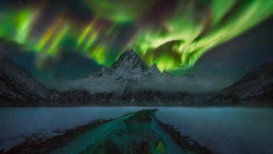 Dancing northern lights on a witer night wallpaper