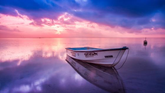 White boat under the pink sky wallpaper