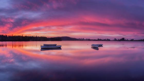 Loch Rusky, Trossachs National Park, Scotland wallpaper