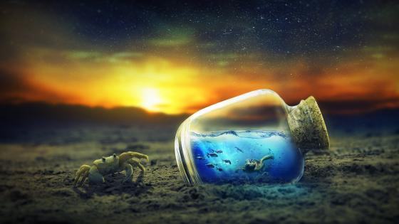 Tiny little ocean in a bottle wallpaper