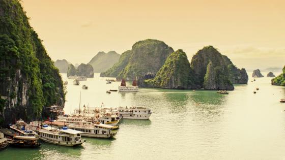 Ships in the Halong Bay wallpaper