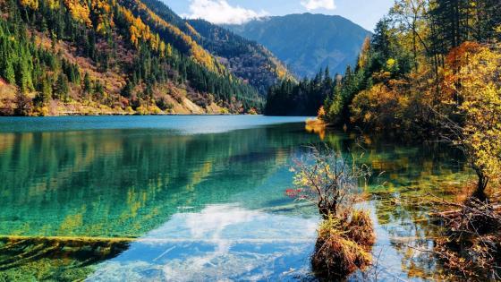 Jiuzhai Valley wallpaper