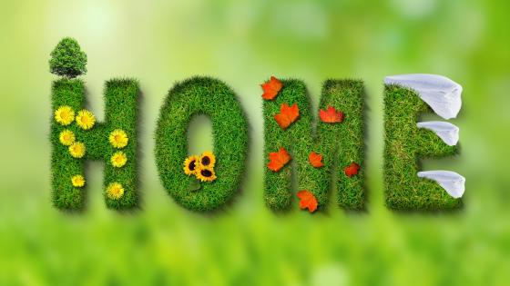HOME text from grass wallpaper
