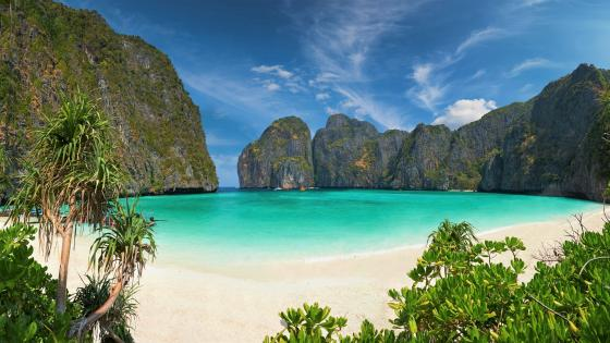 Maya Bay, Phi Phi Islands wallpaper