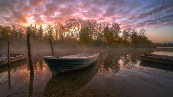 Rowing boat on a misty lake wallpaper