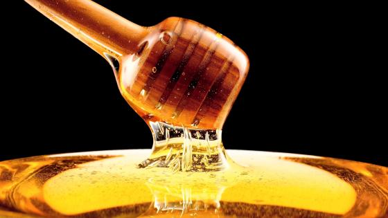 Honey wallpaper