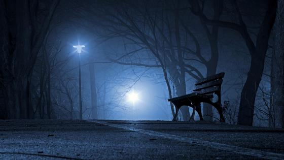 Bench in the night road wallpaper