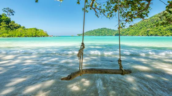 Swing over the ocean wallpaper