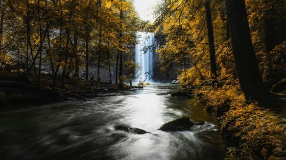 Foster Falls (Sequatchie,Tennessee) wallpaper
