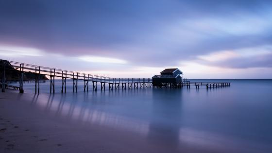 Jetty in the blue hour wallpaper